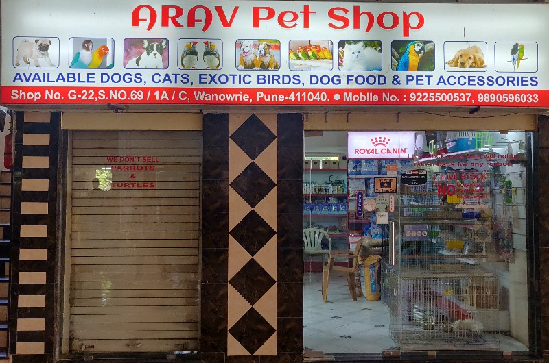 Arav Pet Shop Pet Store in Kondhwa Pune